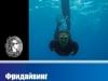 Фридайвинг. Подводная охота.
